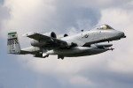 take_2014さんが、横田基地で撮影したアメリカ空軍 A-10C Thunderbolt IIの航空フォト(写真)