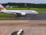 noinaさんが、成田国際空港で撮影した日本航空 787-8 Dreamlinerの航空フォト(写真)