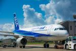 パンダさんが、大館能代空港で撮影した全日空 A320-211の航空フォト(写真)