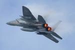 HAYATOさんが、小松空港で撮影した航空自衛隊 F-15J Eagleの航空フォト(写真)