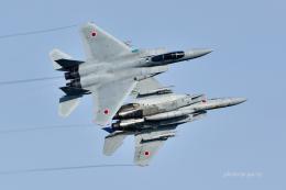 gucciyさんが、小松空港で撮影した航空自衛隊 F-15J Eagleの航空フォト(飛行機 写真・画像)