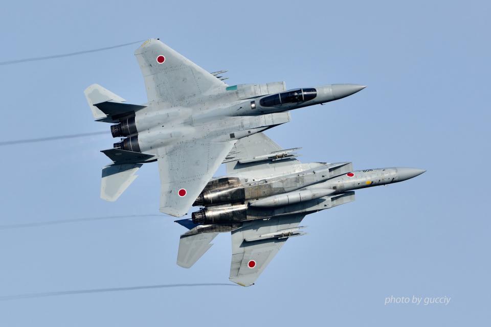 gucciyさんの航空自衛隊 Mitsubishi F-15J Eagle (32-8819) 航空フォト