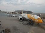 シフォンさんが、香港国際空港で撮影したスクート (〜2017) 787-9の航空フォト(飛行機 写真・画像)