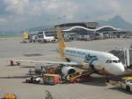 シフォンさんが、香港国際空港で撮影したセブパシフィック航空 A319-111の航空フォト(飛行機 写真・画像)