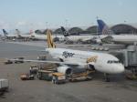 シフォンさんが、香港国際空港で撮影したタイガーエア A320-232の航空フォト(飛行機 写真・画像)