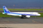 アイスコーヒーさんが、羽田空港で撮影した全日空 A320-211の航空フォト(飛行機 写真・画像)