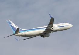 SHIKIさんが、小松空港で撮影した全日空 737-881の航空フォト(飛行機 写真・画像)