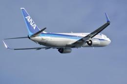 Shuppoさんが、小松空港で撮影した全日空 737-881の航空フォト(飛行機 写真・画像)