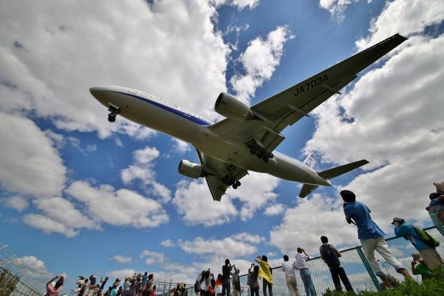リリココさんが、伊丹空港で撮影した全日空 777-281の航空フォト(飛行機 写真・画像)