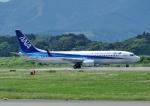じーく。さんが、静岡空港で撮影した全日空 737-881の航空フォト(写真)