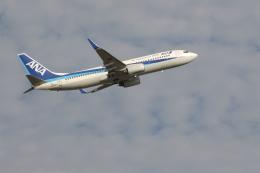 イソロクガトブさんが、小松空港で撮影した全日空 737-881の航空フォト(飛行機 写真・画像)