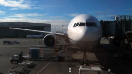 Co-pilootjeさんが、シアトル タコマ国際空港で撮影した全日空 777-381/ERの航空フォト(飛行機 写真・画像)