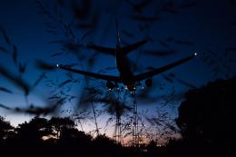 quamen88さんが、伊丹空港で撮影した全日空の航空フォト(飛行機 写真・画像)