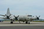 パンダさんが、三沢飛行場で撮影した海上自衛隊 P-3Cの航空フォト(写真)