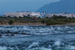 よっさん1102さんが、富山空港で撮影した全日空 737-881の航空フォト(写真)