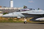 Dickiesさんが、厚木飛行場で撮影したアメリカ海軍 F/A-18F Super Hornetの航空フォト(写真)