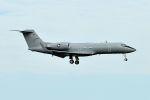 うめやしきさんが、厚木飛行場で撮影したアメリカ海兵隊 C-20G Gulfstream IV (G-IV)の航空フォト(飛行機 写真・画像)