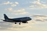 金魚さんが、シンシナティ・ノーザンケンタッキー国際空港で撮影したフロンティア航空 A319-112の航空フォト(写真)