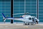 パンダさんが、東京ヘリポートで撮影したディーエイチシー AS350B3 Ecureuilの航空フォト(飛行機 写真・画像)