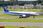 みなかもさんが、成田国際空港で撮影した全日空 A320-214の航空フォト(写真)