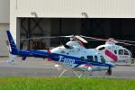 パンダさんが、東京ヘリポートで撮影した中日本航空 430の航空フォト(写真)