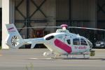 パンダさんが、東京ヘリポートで撮影した東邦航空 EC135T2の航空フォト(写真)