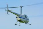 パンダさんが、東京ヘリポートで撮影したディーエイチシー R44の航空フォト(飛行機 写真・画像)