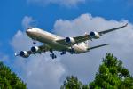 パンダさんが、成田国際空港で撮影したエティハド航空 A340-541の航空フォト(写真)