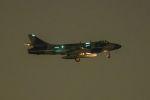 うめやしきさんが、厚木飛行場で撮影したATAC Hunter F.58の航空フォト(写真)