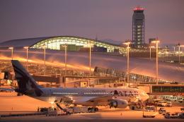 ☆ subg ☆さんが、関西国際空港で撮影したカタール航空 A330-202の航空フォト(飛行機 写真・画像)