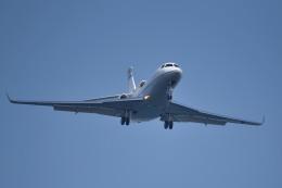 tsubasa0624さんが、羽田空港で撮影したプライベートエア Falcon 7Xの航空フォト(写真)