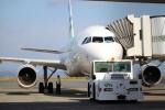 Dickiesさんが、静岡空港で撮影したスカイウィングス・アジア・エアラインズ A320-212の航空フォト(写真)