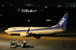 ジャガイモさんが、伊丹空港で撮影した全日空 737-881の航空フォト(飛行機 写真・画像)