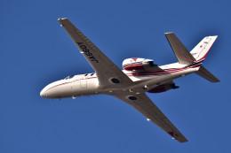 Dojalanaさんが、函館空港で撮影した読売新聞 560 Citation Encore+の航空フォト(飛行機 写真・画像)