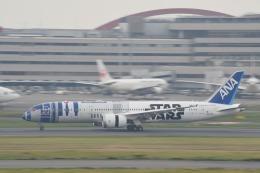 Kanatoさんが、羽田空港で撮影した全日空 787-9の航空フォト(飛行機 写真・画像)