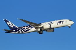 y_ryuさんが、羽田空港で撮影した全日空 787-8 Dreamlinerの航空フォト(写真)