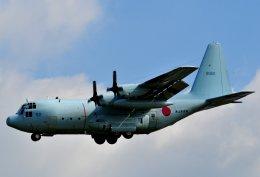 厚木飛行場 - Naval Air Facility Atsugi [NJA/RJTA]で撮影された海上自衛隊 - Japan Maritime Self-Defense Forceの航空機写真