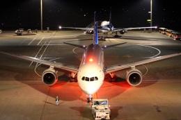 ころちゃんさんが、羽田空港で撮影した全日空 787-8 Dreamlinerの航空フォト(飛行機 写真・画像)