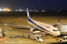 サイパンダマルコスさんが、小松空港で撮影した全日空 737-881の航空フォト(飛行機 写真・画像)