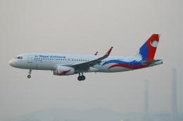 シロクマパパさんが、香港国際空港で撮影したネパール航空 A320-233の航空フォト(飛行機 写真・画像)