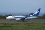 Speed Birdさんが、大島空港で撮影した全日空 737-781の航空フォト(写真)