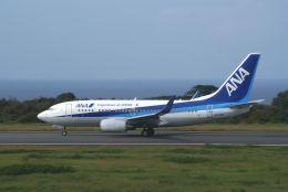 Speed Birdさんが、大島空港で撮影した全日空 737-781の航空フォト(飛行機 写真・画像)