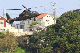 りんたろうさんが、久里浜駐屯地で撮影した陸上自衛隊 OH-1の航空フォト(飛行機 写真・画像)