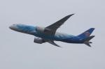 しんさんが、関西国際空港で撮影した中国南方航空 787-8 Dreamlinerの航空フォト(写真)