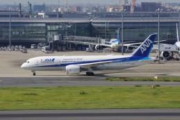 しんさんが、羽田空港で撮影した全日空 787-8 Dreamlinerの航空フォト(写真)