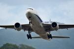 Dojalanaさんが、函館空港で撮影した全日空 777-281の航空フォト(飛行機 写真・画像)