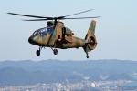 りんたろうさんが、峯岡山分屯基地で撮影した陸上自衛隊 OH-1の航空フォト(写真)