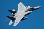 TBさんが、茨城空港で撮影した航空自衛隊 F-15J Eagleの航空フォト(写真)