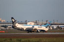 T.Sazenさんが、成田国際空港で撮影したオーロラ 737-5L9の航空フォト(写真)