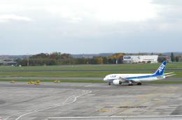 バーバ父さんが、ブリュッセル国際空港で撮影した全日空 787-8 Dreamlinerの航空フォト(飛行機 写真・画像)